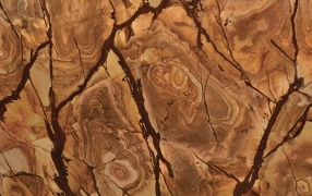 QUARTZITO WOOD STONE